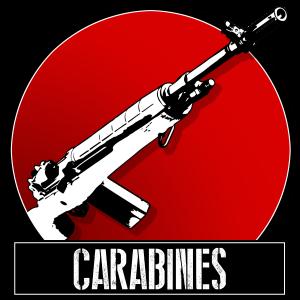 Carabines (arme longue à canon rayé)